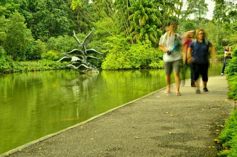 Turistas em jardins botânicos de Singapura fotografia de stock royalty free