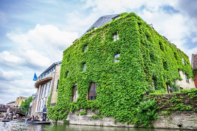 Turistas en el barco en el canal y el edificio histórico cubierto en hojas, Cambridge, Inglaterra, 21ra de mayo de 2017 fotos de archivo libres de regalías
