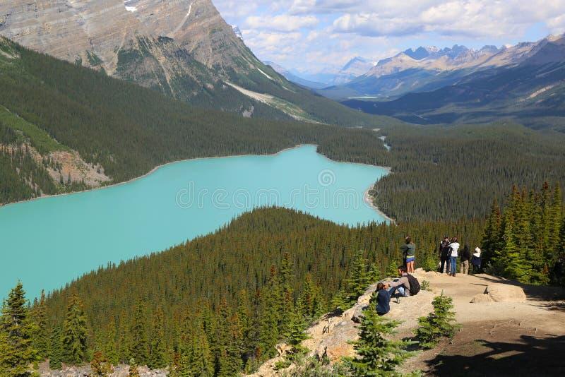 Turistas en el lago Peyto en el parque nacional de Banff, Alberta, Canadá fotos de archivo