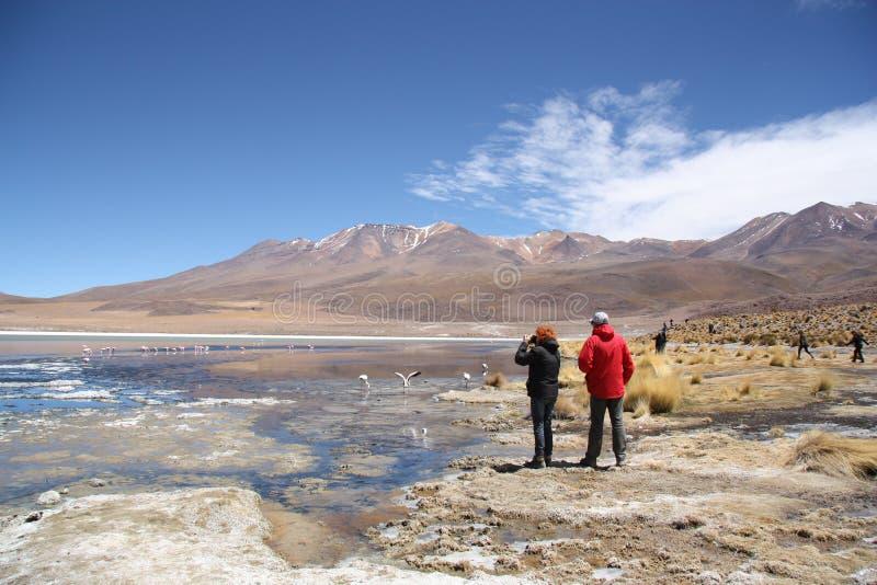 Turistas en la laguna con los flamencos en Uyuni, Bolivia fotos de archivo libres de regalías
