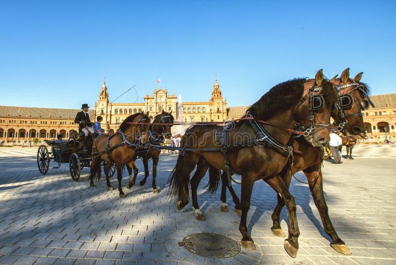 Download Turistas En La Plaza De España De Sevilla Foto editorial - Imagen de españa, lugar: 41916241