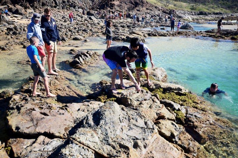 Turistas en las piscinas del champán en Fraser Island Queensland Australia fotos de archivo