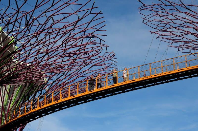 Turistas en OCBC Skyway entre Supertrees en los jardines por la bahía Singapur imagenes de archivo