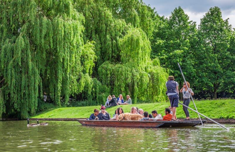 Turistas en un barco con un perro, Cambridge, Inglaterra, 21ra de mayo de 2017 imagen de archivo libre de regalías