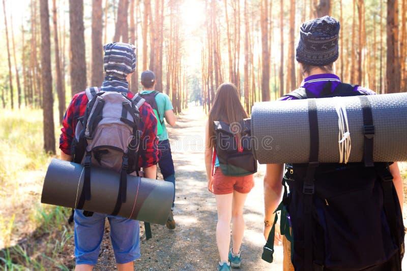 Turistas jovenes en el bosque imagenes de archivo