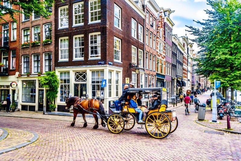 Turistas levando do cavalo e do transporte na vizinhança de Jordaan de Amsterdão imagem de stock royalty free
