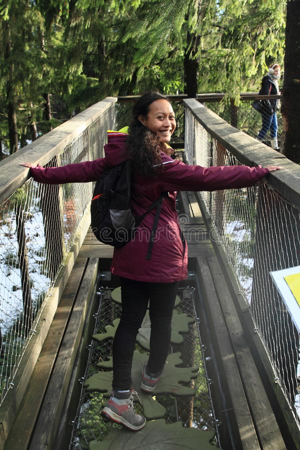 Turistas na vigia de Lipno das árvores da fuga fotografia de stock