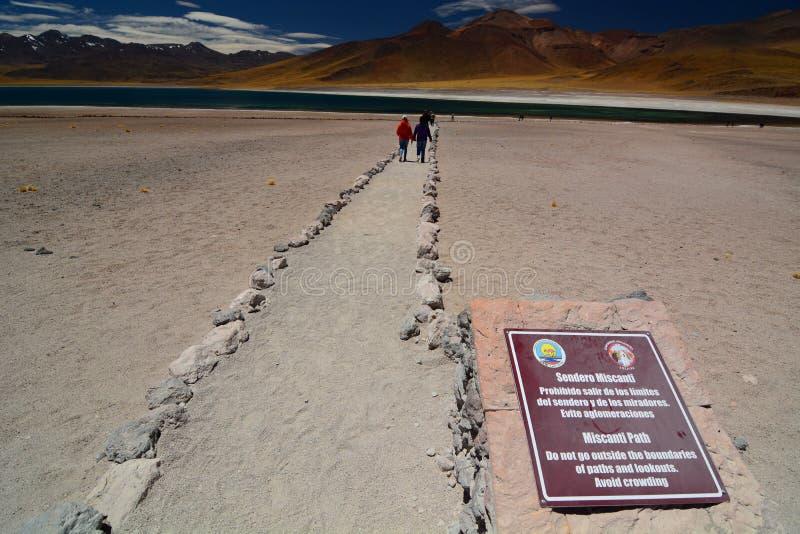 Turistas no lago Miniques Reserva nacional dos flamencos do Los Região de Antofagasta chile fotos de stock royalty free