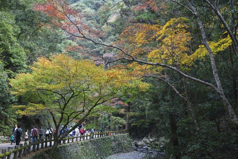 Turistas que andam em fugas à cachoeira de Minoh fotografia de stock