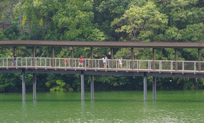 Turistas que andam na ponte de madeira fotografia de stock royalty free