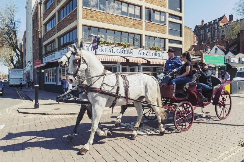 Turistas que apreciam uma excursão sightseeing por um transporte de hackney do vintage tirado pelos cavalos brancos na cidade de  imagens de stock