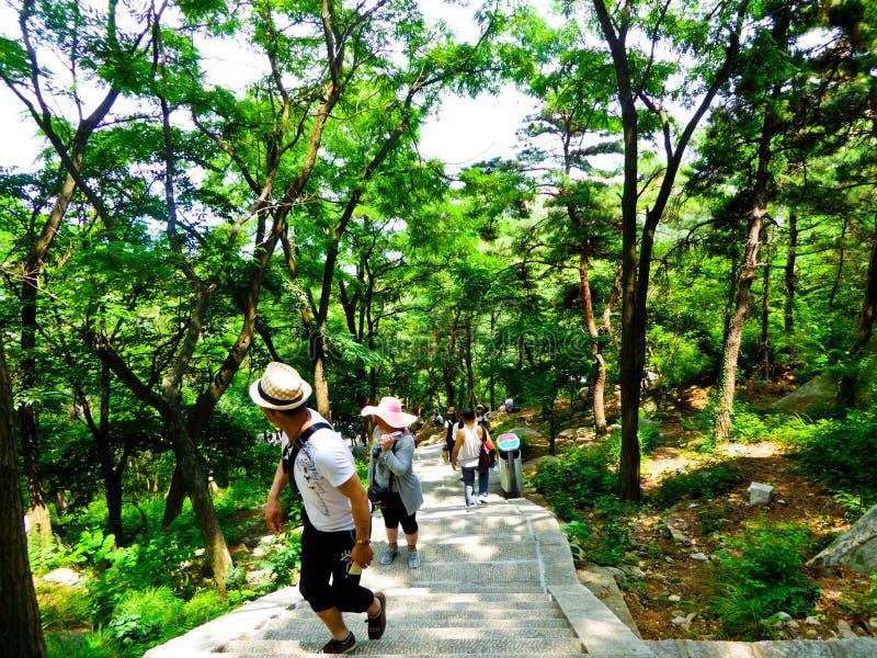 Turistas que escalam a montanha de Laoshan em Qingdao imagem de stock