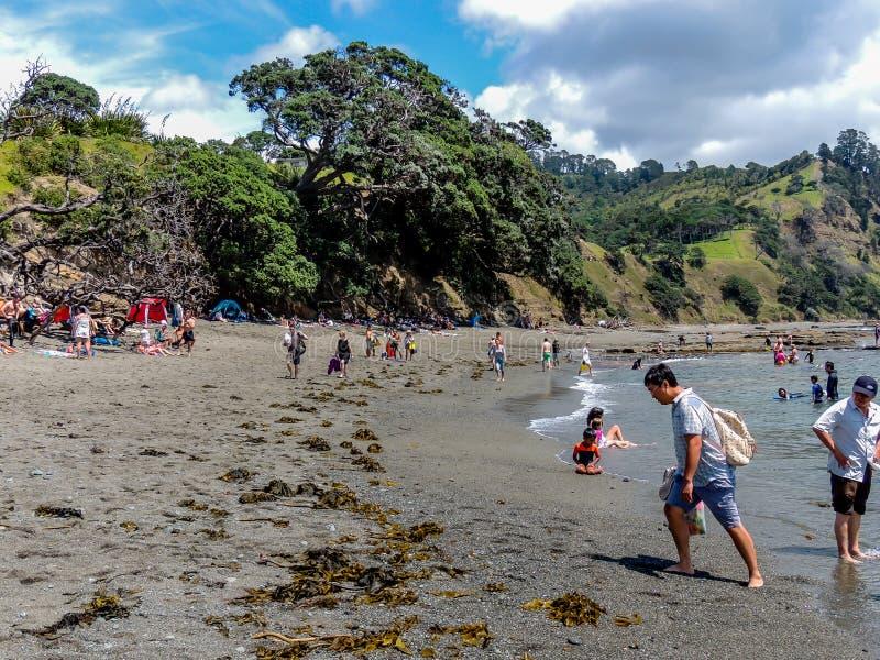 Turistas que fazem o material touristy quando para fora e aproximadamente em Nova Zelândia imagem de stock