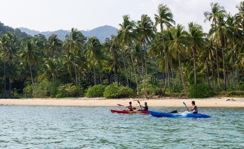 Turistas que kayaking na praia tropical ensolarada com palmeiras fotos de stock royalty free