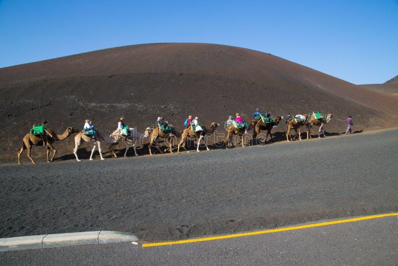 Turistas que montam camelos no parque nacional de Timanfaya imagem de stock