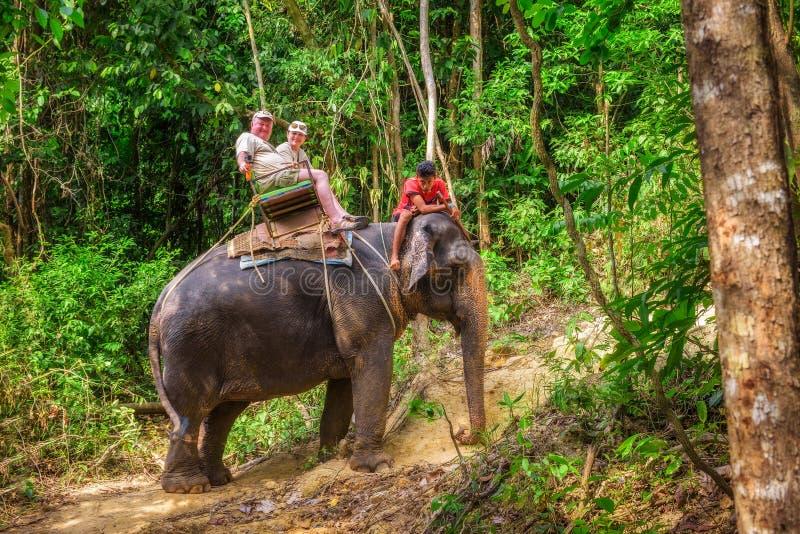 Turistas que montam um elefante em Tailândia imagens de stock