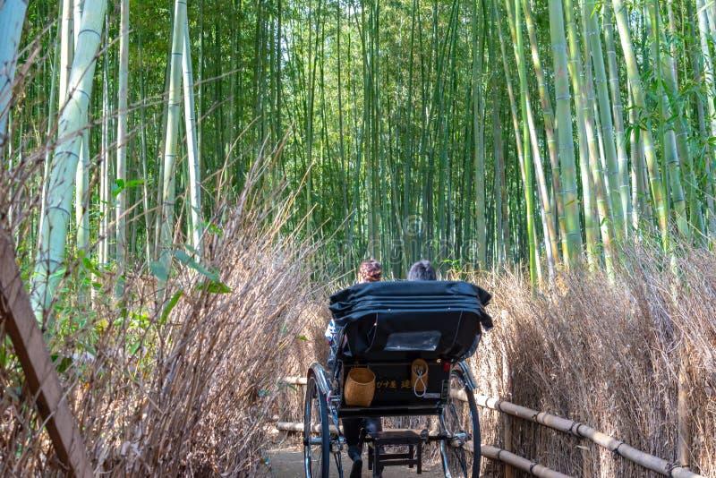 Turistas que montan tirados del carrito a trav?s de una trayectoria de bosque de bamb? en Arashiyama, Kyoto fotos de archivo