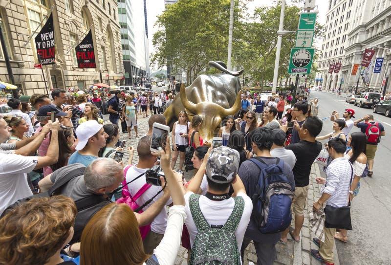 Turistas que tomam imagens da Bull de carregamento imagem de stock