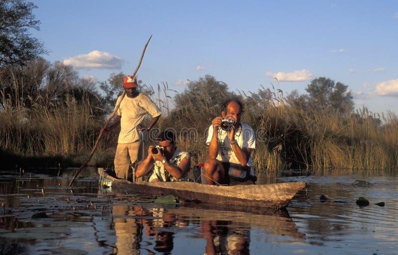 Turistas que toman las fotos de una canoa africana, delta de Okavango, BO imágenes de archivo libres de regalías