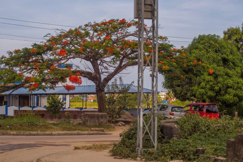 Turistas y locals en el mercado nacional Hombre africano que camina abajo de la calle imagen de archivo