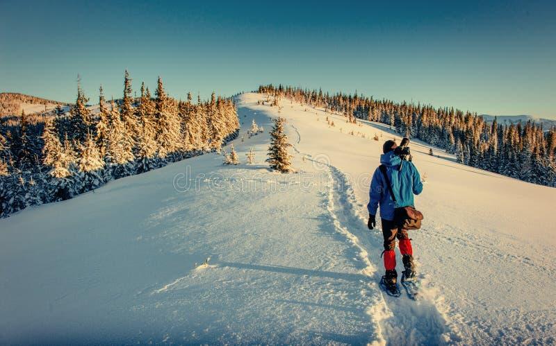Turisten är i vinterberg Carpathians Ukraina, Europa arkivbild