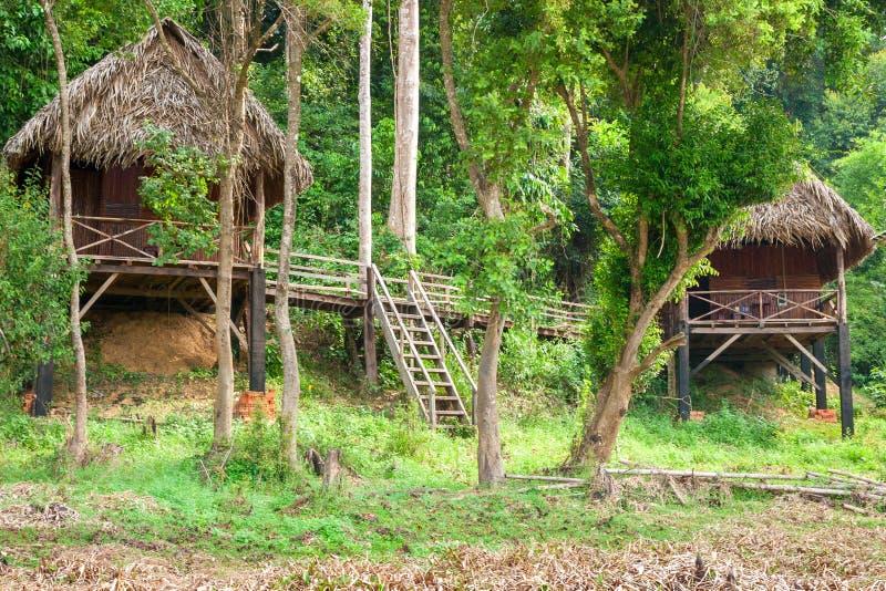 Turisten förlägga i barack på utkanten av djungeln nära Bau Sau krokodil sjön i Cat Tien National Park, Vietnam, Asien royaltyfria foton