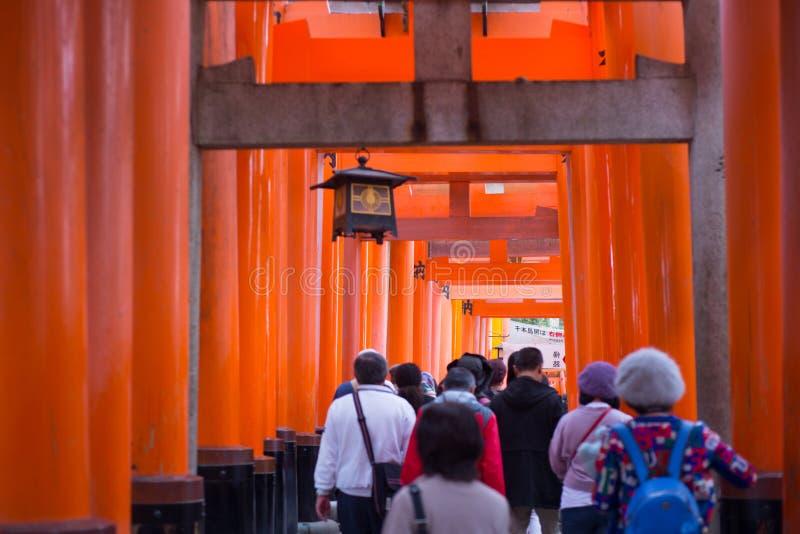 Turisten g?r och ser r?d torii p? den Fushimi Inari-taisha relikskrin royaltyfria foton