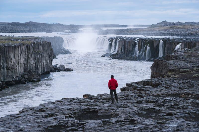 Turisten i ett rött omslag ser den Selfoss vattenfallet arkivfoton
