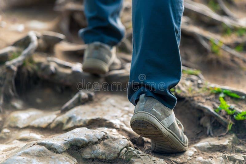 Turisten klättrar upp kullen på hala stenar royaltyfri foto