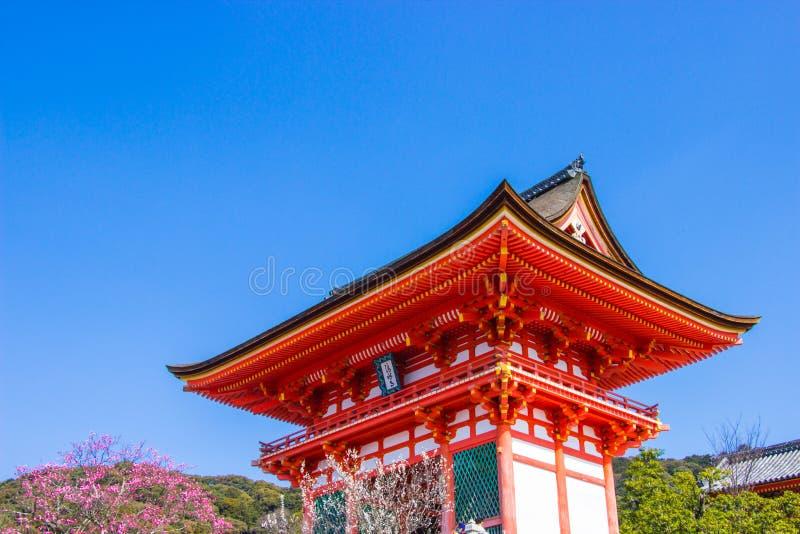 Turisten på den Kiyomizu-dera templet under körsbärsröd sakura blomningtid ska blomma i Kyoto, Ja royaltyfri bild