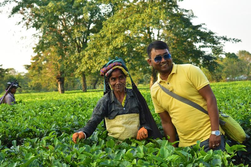 Turisten poserar med en tearbetare som väljer upp teblad vid handen på teträdgården i Darjeeling fotografering för bildbyråer
