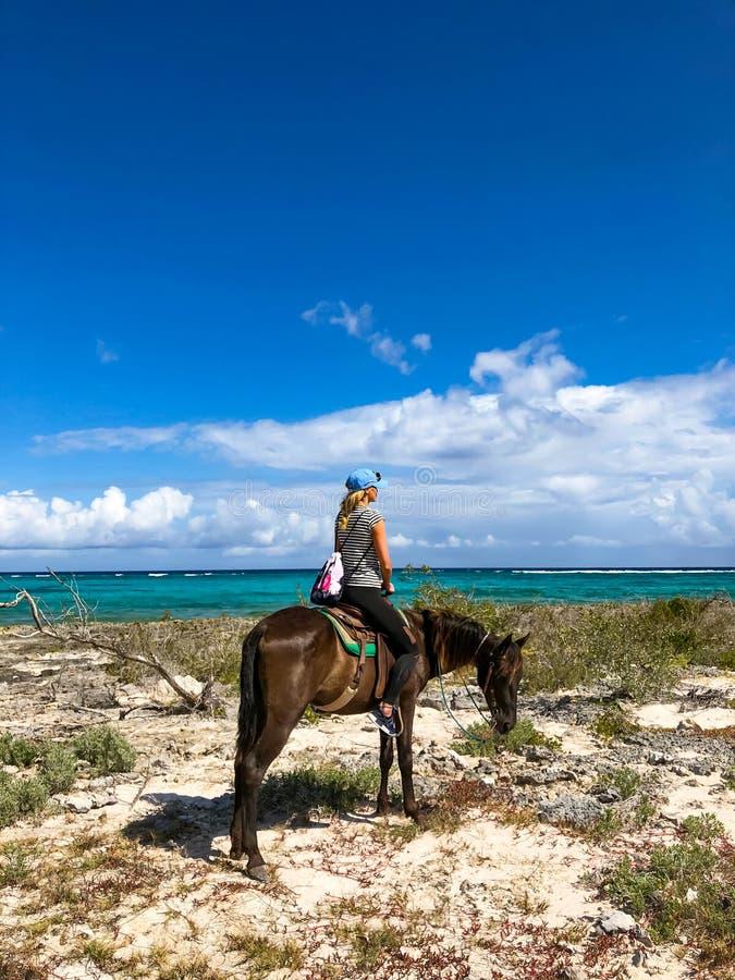 Turister f?r h?stridning i Kuba Flicka p? en h?st p? en strand royaltyfri fotografi