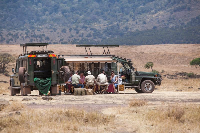 Turister har en lunch nära deras safaribil royaltyfri fotografi