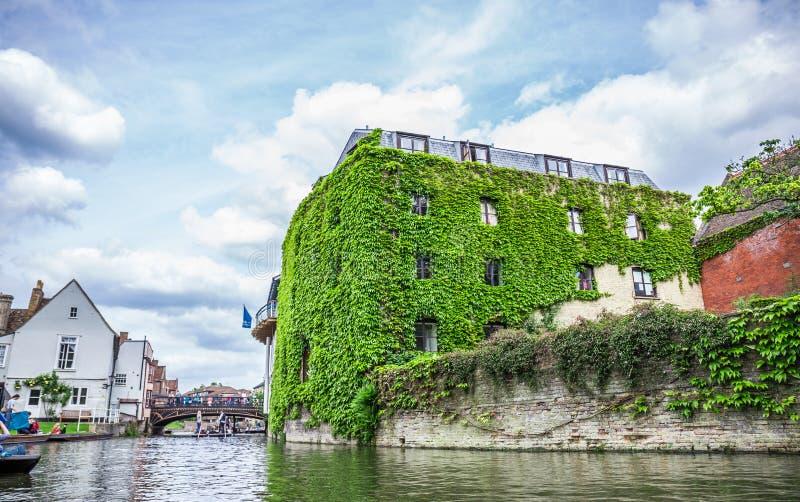Turister i fartyget på kanalen och historisk byggnad som täckas i blad, Cambridge, England, 21st av Maj 2017 arkivbild