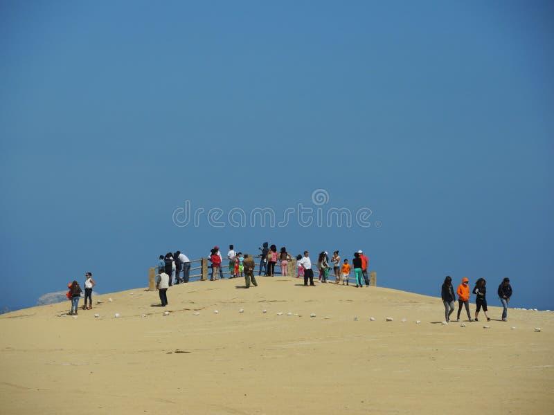 Turister i Paracas, Peru royaltyfri fotografi