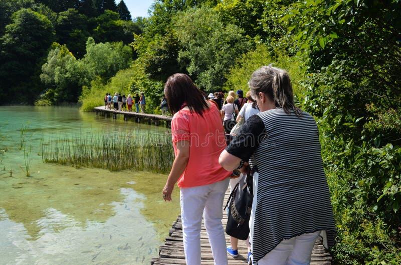 Turister i Plitvice sjöar i Kroatien arkivfoto