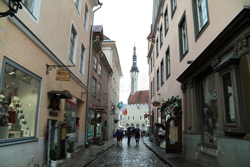 Turister i regnig dag promenerar gamla Tallinn till stadshuset arkivfoton
