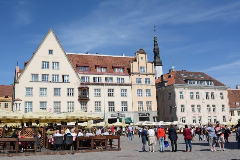 Turister i staden Hall Square, Tallinn, Estland royaltyfria bilder