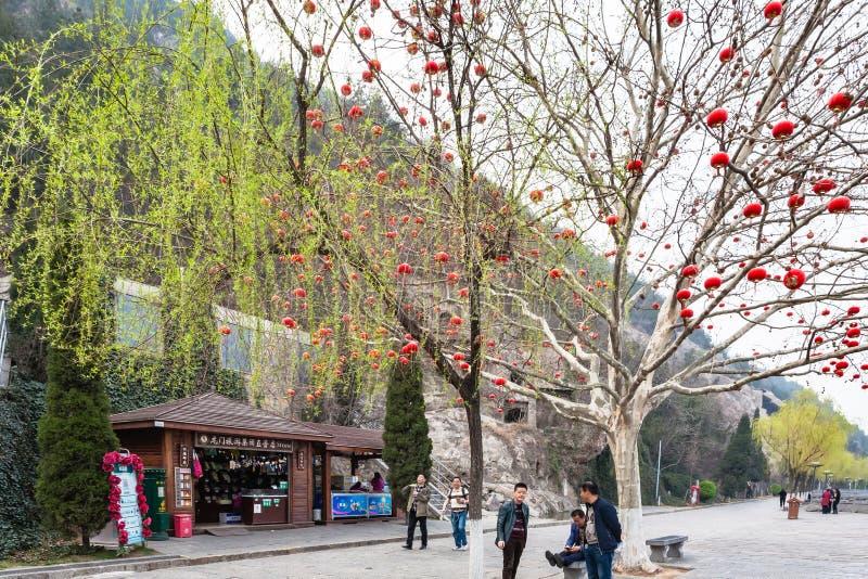 Turister near trädet med kinesiska röda lyktor fotografering för bildbyråer