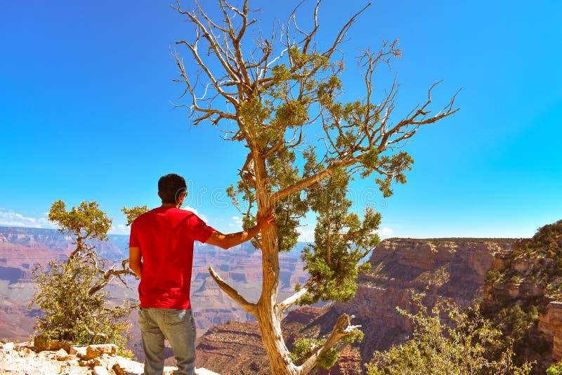 Turister och en perfekt sikt av Grand Canyon arkivbilder