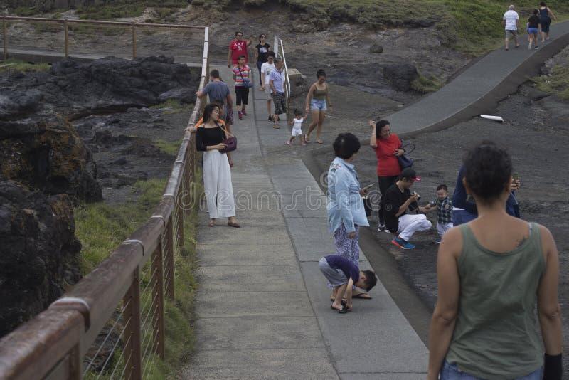 Turister på den Kiama blåshålet på blåshålpunkt royaltyfri fotografi