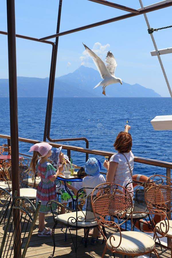Turister på skeppet matade från händerna av havsfiskmåsar royaltyfria foton
