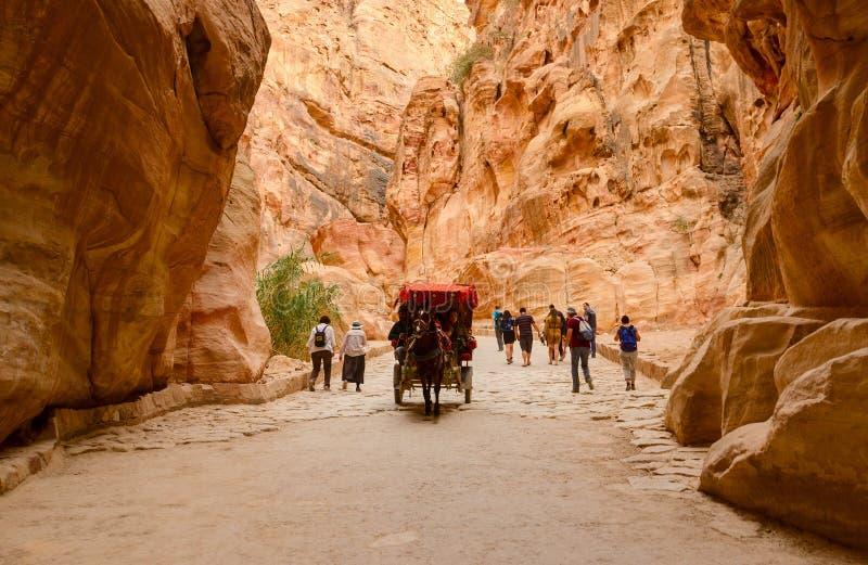 Turister rider i en vagn och går till och med klyftan i Petra, J arkivbild