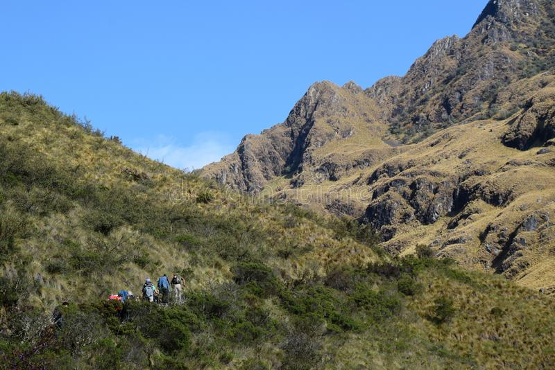 Turister som fotvandrar den berömda Incaslingan till Machu Picchu arkivfoto