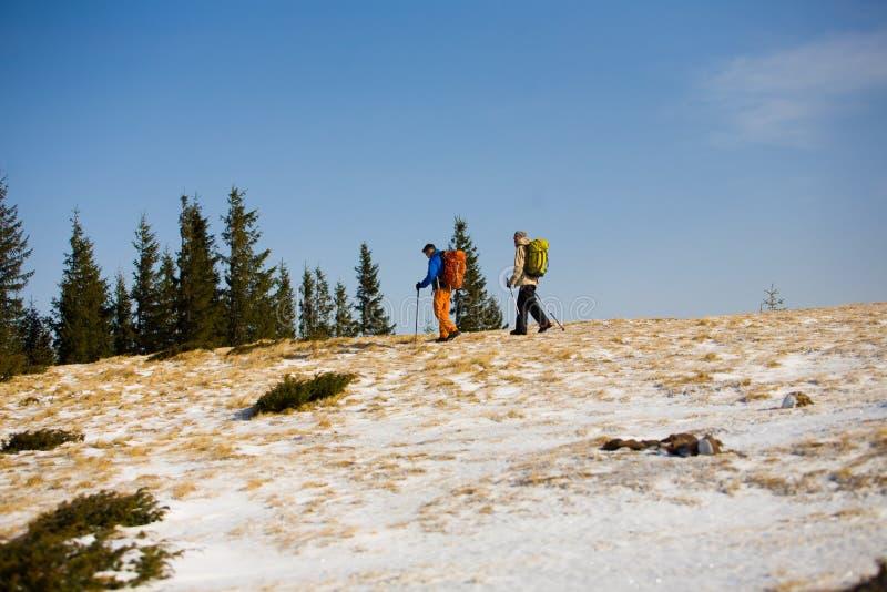 Turister som fotvandrar i bergen royaltyfria foton