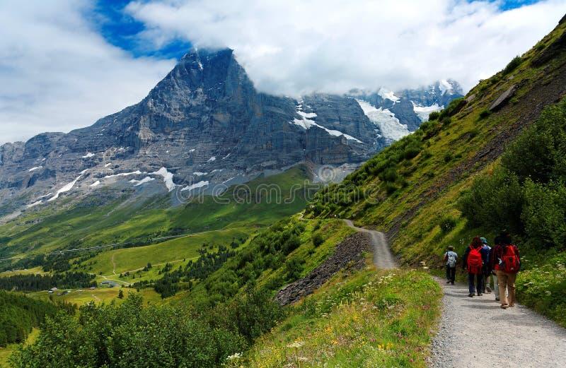 Turister som fotvandrar på en slinga vid den gräs- bergssidan från Mannlichen till Kleine Scheidegg royaltyfria foton