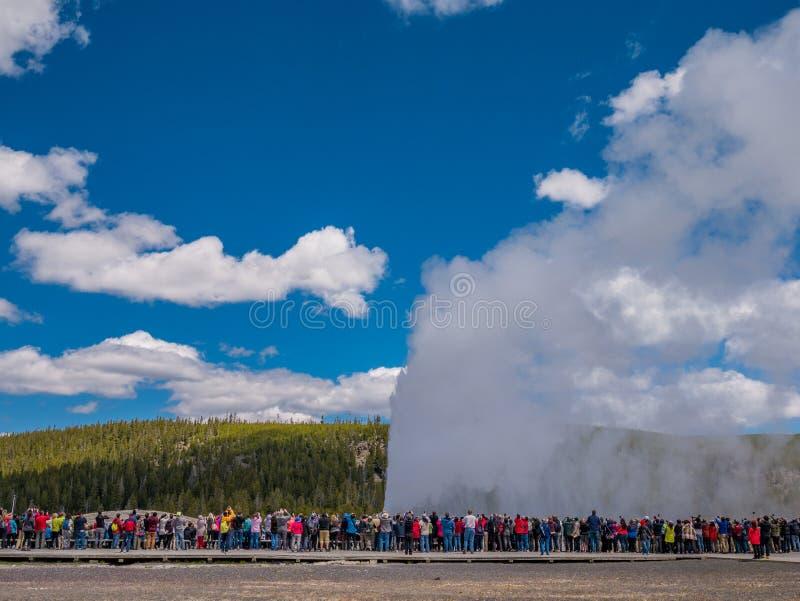 Turister som håller ögonen på den gamla trogna geyseren få utbrott i Yellowstone royaltyfri foto