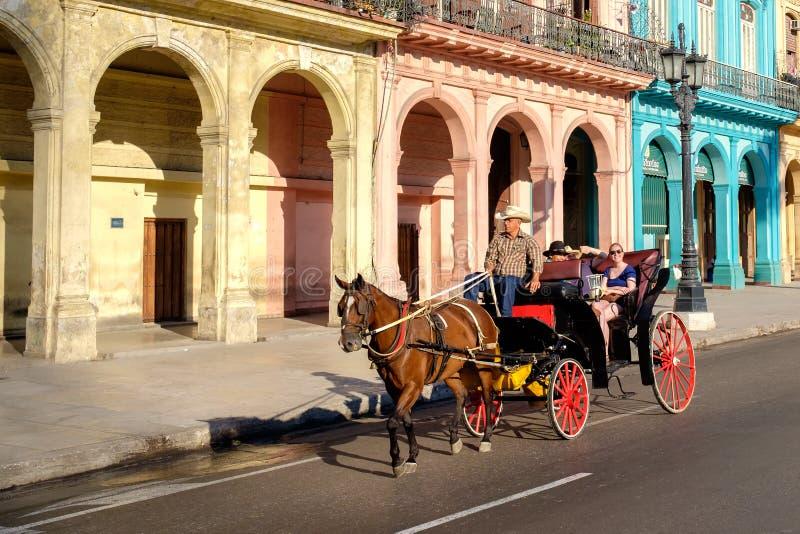 Turister som rider en hästvagn i gammal havannacigarr royaltyfri bild