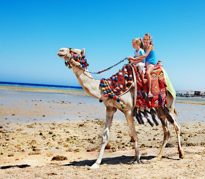 Turister som rider kamlet på stranden av Egypten. royaltyfri bild