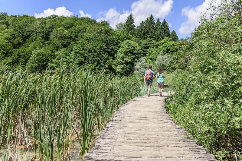 Turisti che camminano lungo i passaggi pedonali di legno nei laghi parco nazionale, Croazia Plitvice immagini stock libere da diritti